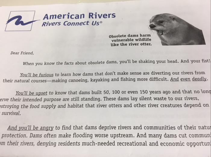 AmericanRiverOtters